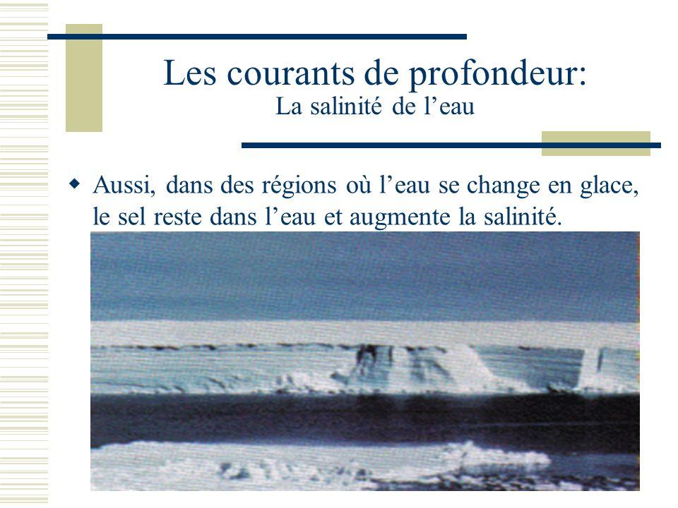 Les courants de profondeur: La salinité de leau Aussi, dans des régions où leau se change en glace, le sel reste dans leau et augmente la salinité.