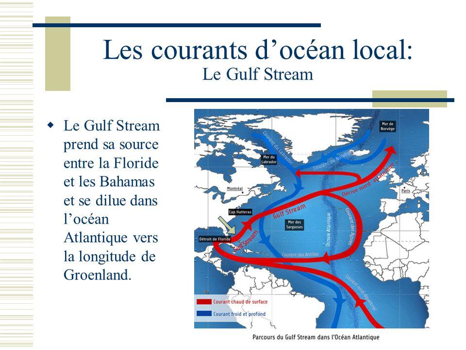 Les courants docéan local: Le Gulf Stream Le Gulf Stream prend sa source entre la Floride et les Bahamas et se dilue dans locéan Atlantique vers la longitude de Groenland.