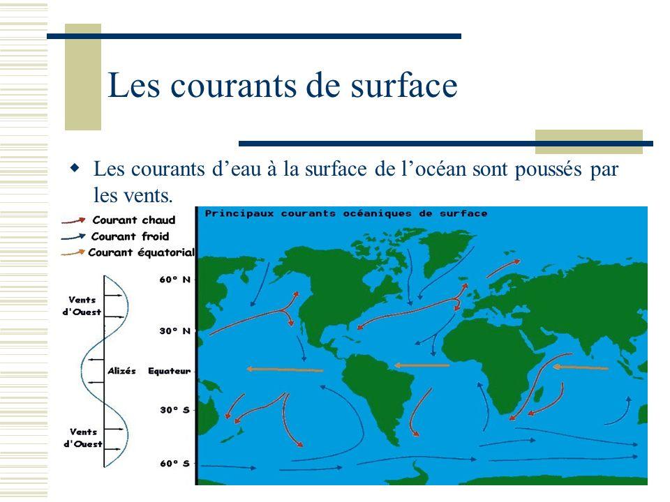 Les courants de surface Les courants deau à la surface de locéan sont poussés par les vents.
