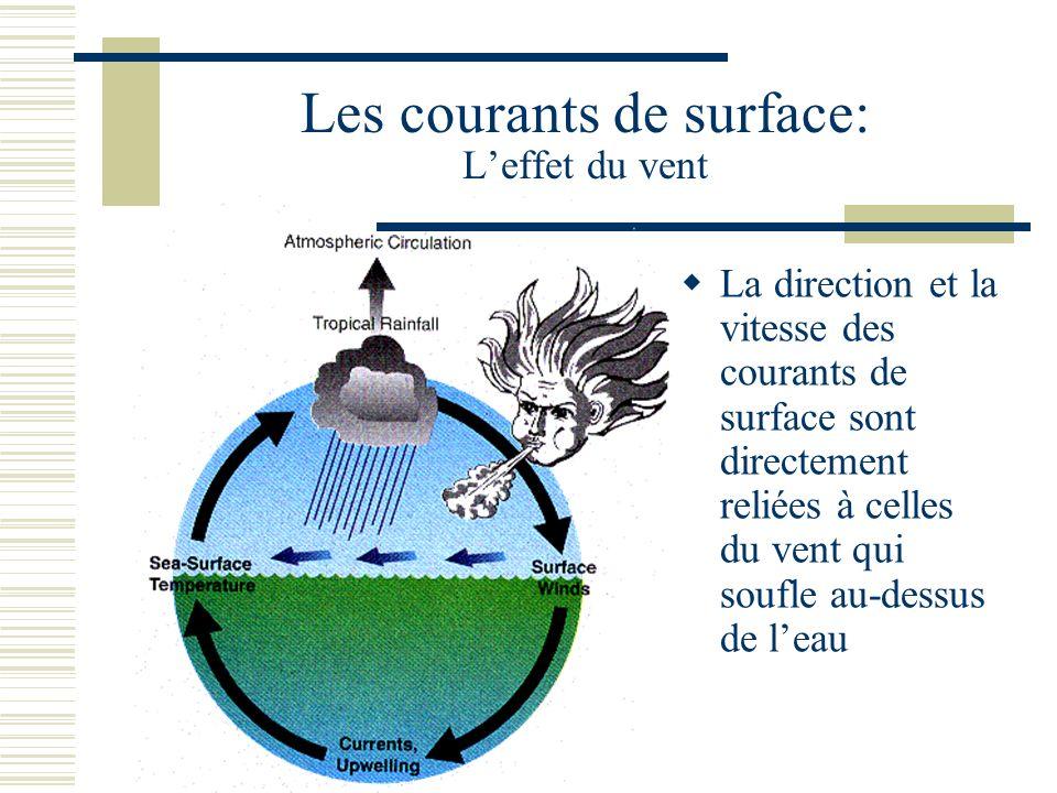 Les courants de surface: Leffet du vent La direction et la vitesse des courants de surface sont directement reliées à celles du vent qui soufle au-dessus de leau