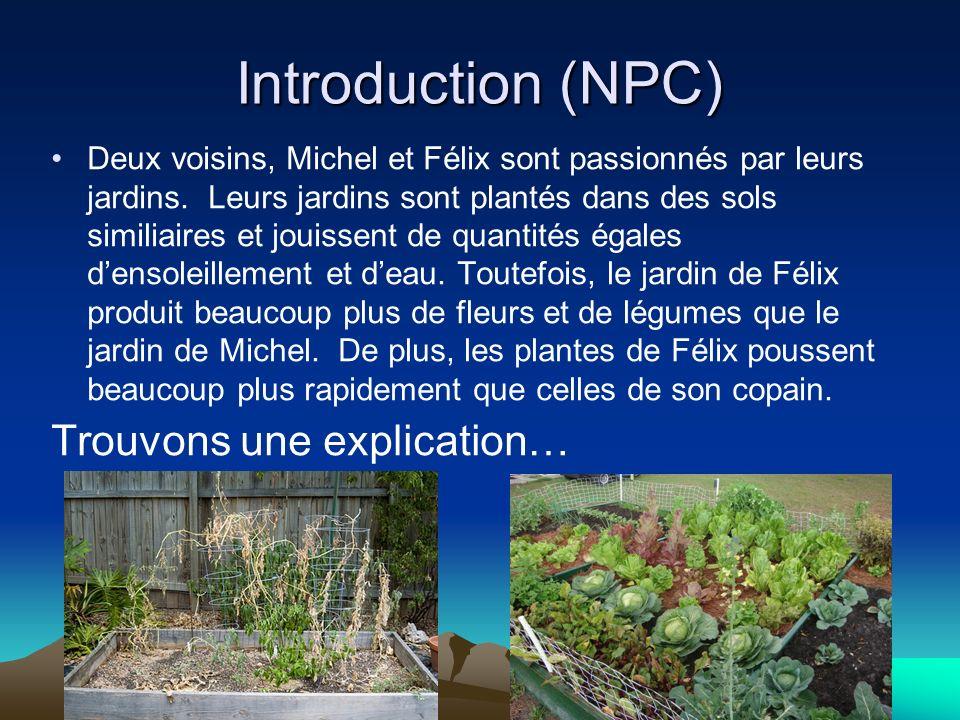 Introduction (NPC) Deux voisins, Michel et Félix sont passionnés par leurs jardins. Leurs jardins sont plantés dans des sols similiaires et jouissent