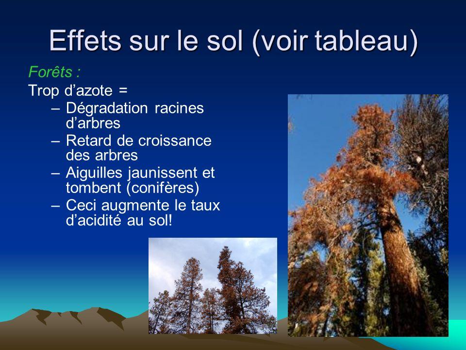 Effets sur le sol (voir tableau) Forêts : Trop dazote = –Dégradation racines darbres –Retard de croissance des arbres –Aiguilles jaunissent et tombent