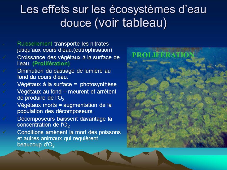 Les effets sur les écosystèmes deau douce (voir tableau) Ruissellement transporte les nitrates jusquaux cours deau.(eutrophisation) Croissance des vég