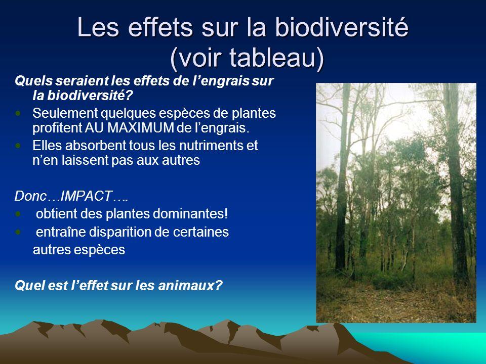 Les effets sur la biodiversité (voir tableau) Quels seraient les effets de lengrais sur la biodiversité? Seulement quelques espèces de plantes profite