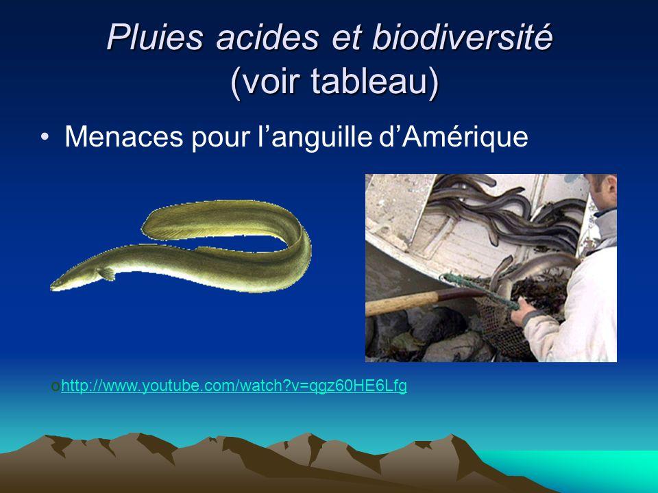 Pluies acides et biodiversité (voir tableau) Menaces pour languille dAmérique o http://www.youtube.com/watch?v=qgz60HE6Lfg http://www.youtube.com/watc