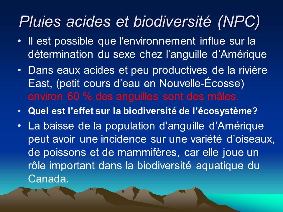 Pluies acides et biodiversité (NPC) Il est possible que l'environnement influe sur la détermination du sexe chez languille dAmérique Dans eaux acides