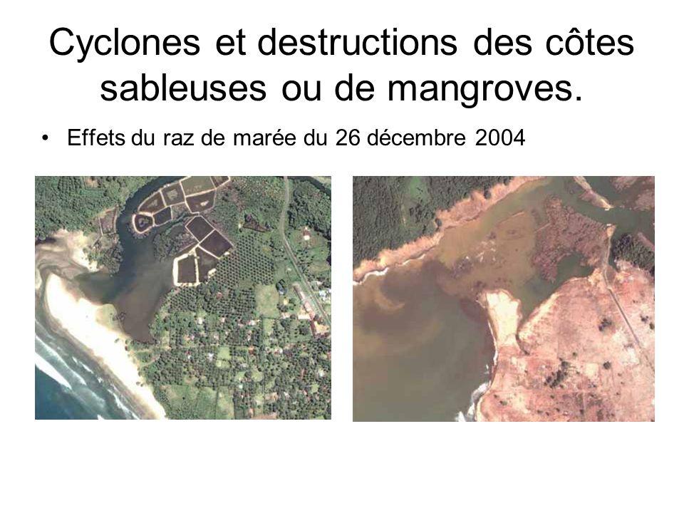 Cyclones et destructions des côtes sableuses ou de mangroves. Effets du raz de marée du 26 décembre 2004