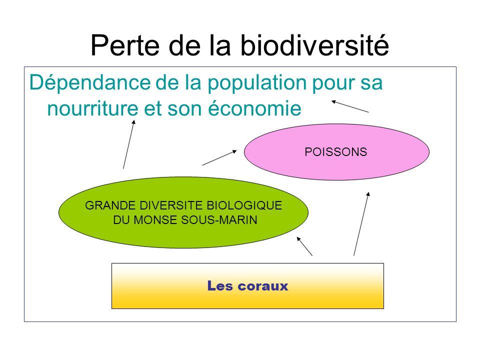 Perte de la biodiversité Dépendance de la population pour sa nourriture et son économie Les coraux GRANDE DIVERSITE BIOLOGIQUE DU MONSE SOUS-MARIN POI