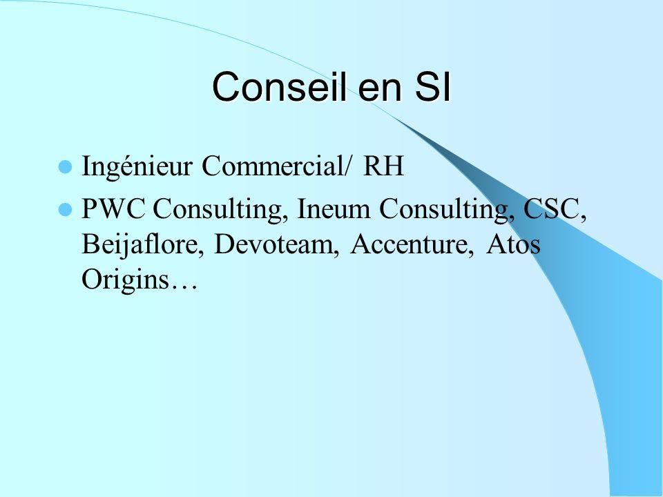 Conseil en SI Ingénieur Commercial/ RH PWC Consulting, Ineum Consulting, CSC, Beijaflore, Devoteam, Accenture, Atos Origins…