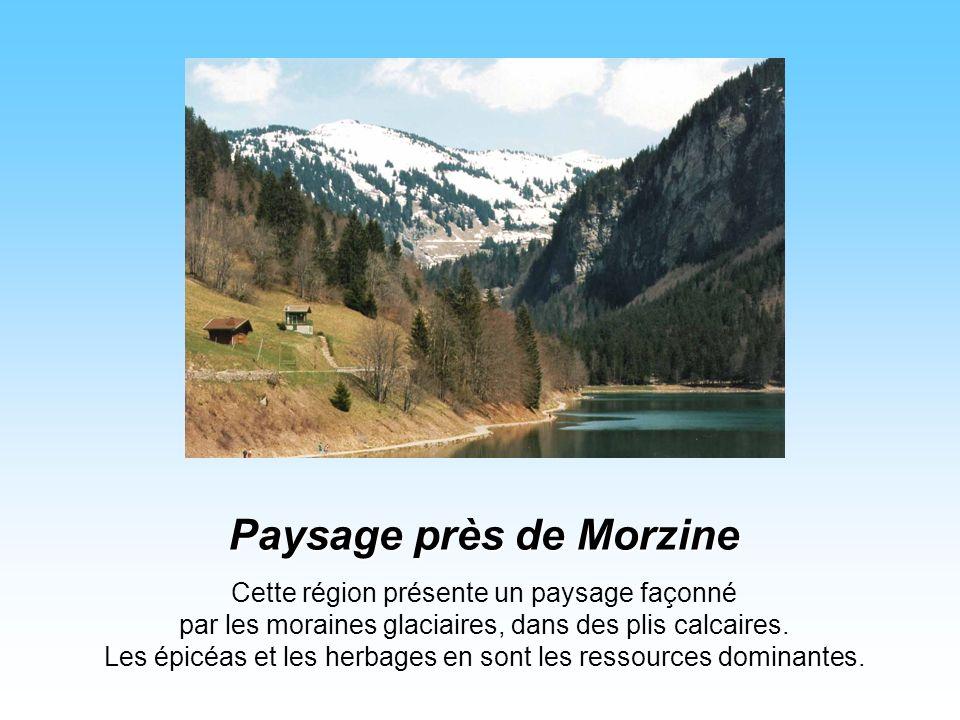 Situé près de Thonon, sur la rive du Léman. Amédée VIII de Savoie l'habita, et une communauté de chartreux y fut installée du XVIIème siècle à la Révo
