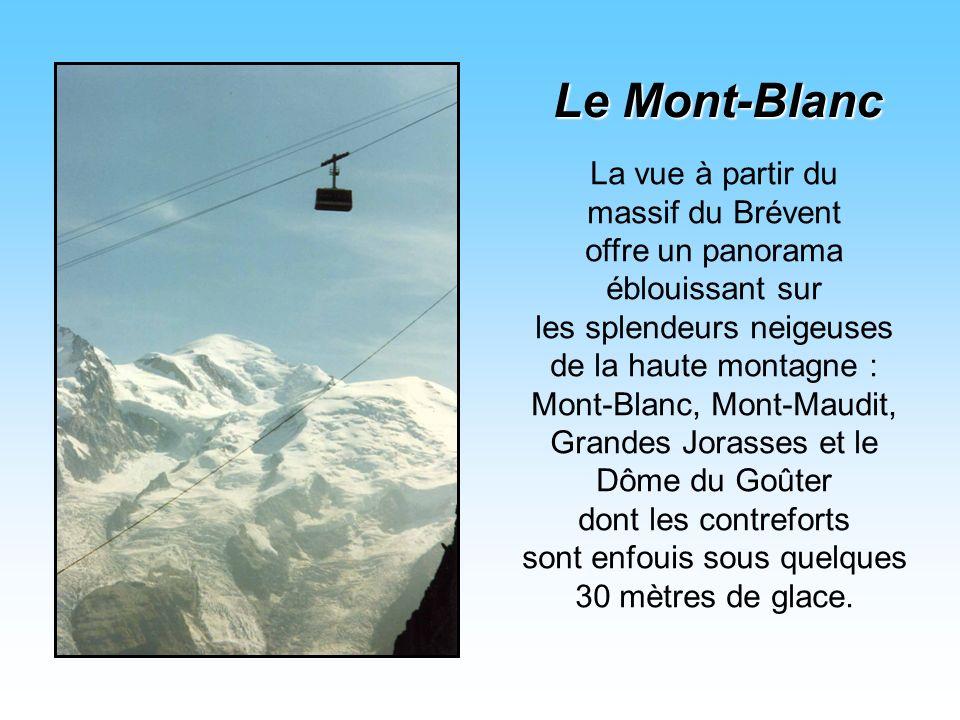 La vue à partir du massif du Brévent offre un panorama éblouissant sur les splendeurs neigeuses de la haute montagne : Mont-Blanc, Mont-Maudit, Grandes Jorasses et le Dôme du Goûter dont les contreforts sont enfouis sous quelques 30 mètres de glace.
