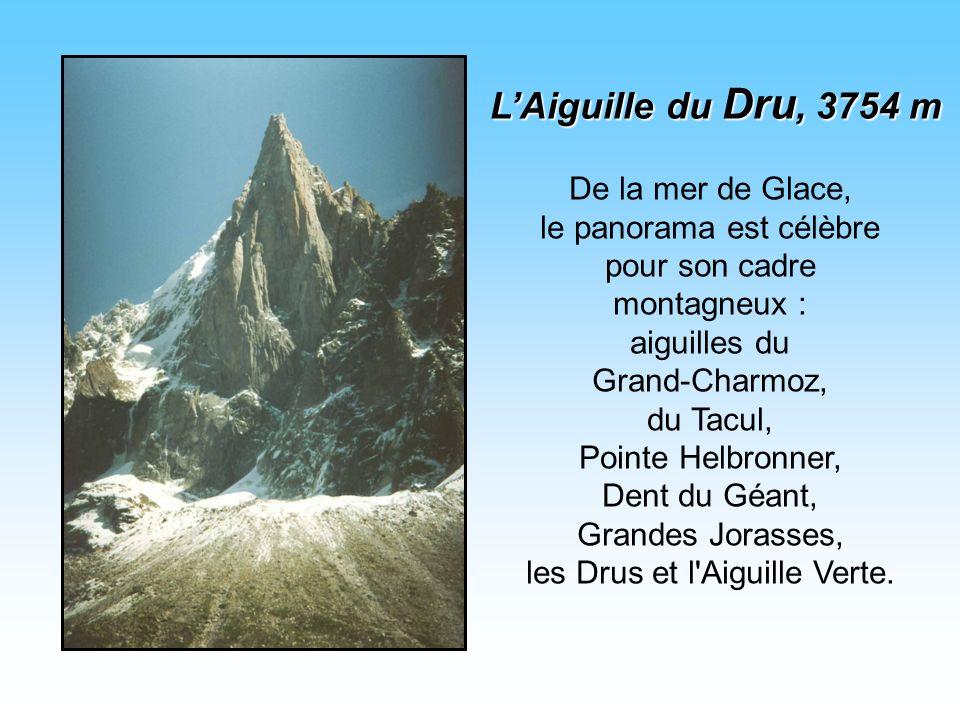 De la mer de Glace, le panorama est célèbre pour son cadre montagneux : aiguilles du Grand-Charmoz, du Tacul, Pointe Helbronner, Dent du Géant, Grandes Jorasses, les Drus et l Aiguille Verte.