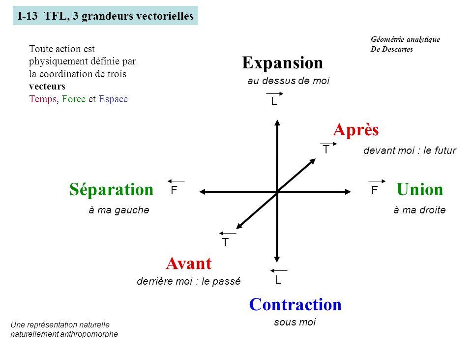 F L F T L T Avant Après UnionSéparation Expansion Contraction I-13 TFL, 3 grandeurs vectorielles Toute action est physiquement définie par la coordina
