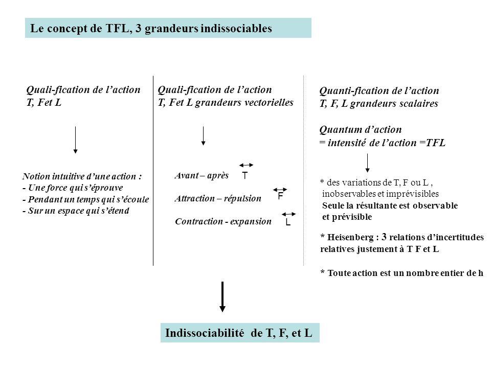 Quanti-fication de laction T, F, L grandeurs scalaires Quantum daction = intensité de laction =TFL * des variations de T, F ou L, inobservables et imp