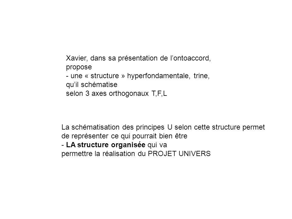 La schématisation des principes U selon cette structure permet de représenter ce qui pourrait bien être - LA structure organisée qui va permettre la r