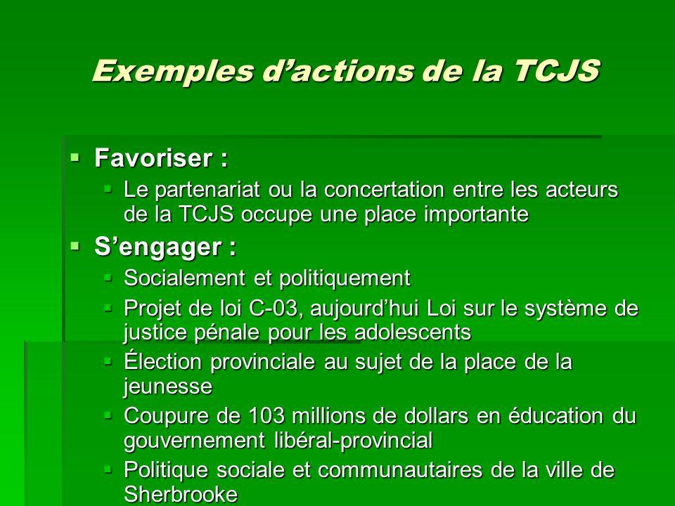 Exemples dactions de la TCJS Favoriser : Favoriser : Le partenariat ou la concertation entre les acteurs de la TCJS occupe une place importante Le par