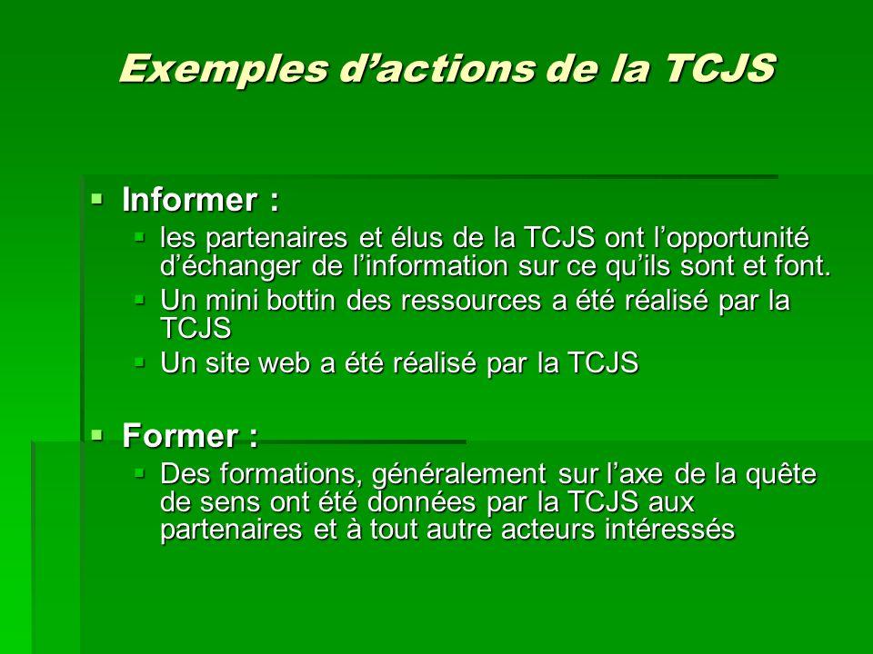 Exemples dactions de la TCJS Sensibiliser : Sensibiliser : Les informations, les formations, les sorties médiatiques sont tous des activités permettant la sensibilisation Les informations, les formations, les sorties médiatiques sont tous des activités permettant la sensibilisation Comité de travail pour favoriser les ponts intergénérationnels Comité de travail pour favoriser les ponts intergénérationnels Solliciter : Solliciter : La TCJS cherche toujours à engager de nouveaux acteurs pour qui la question jeunesse est importante, à lintérieur de ses 12 secteurs La TCJS cherche toujours à engager de nouveaux acteurs pour qui la question jeunesse est importante, à lintérieur de ses 12 secteurs