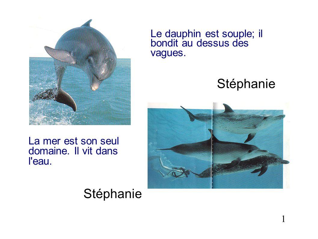 La mer est son seul domaine. Il vit dans l'eau. Stéphanie 1 Le dauphin est souple; il bondit au dessus des vagues. Stéphanie