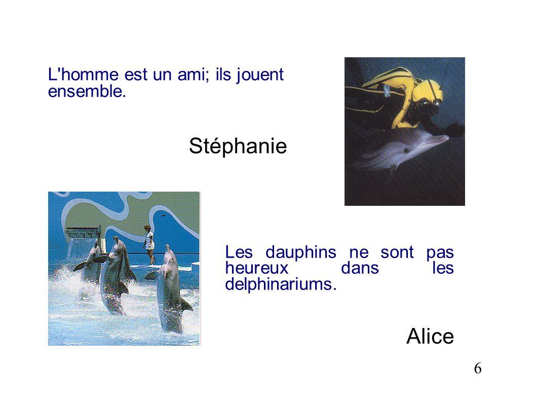 L'homme est un ami; ils jouent ensemble. Stéphanie 6 Les dauphins ne sont pas heureux dans les delphinariums. Alice
