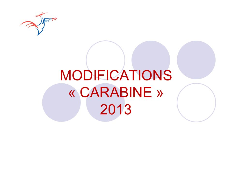 MODIFICATIONS « CARABINE » 2013