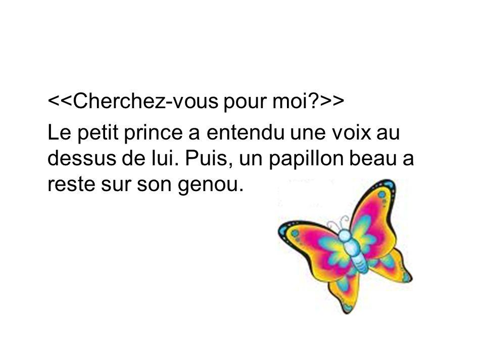 > Le petit prince a entendu une voix au dessus de lui. Puis, un papillon beau a reste sur son genou.