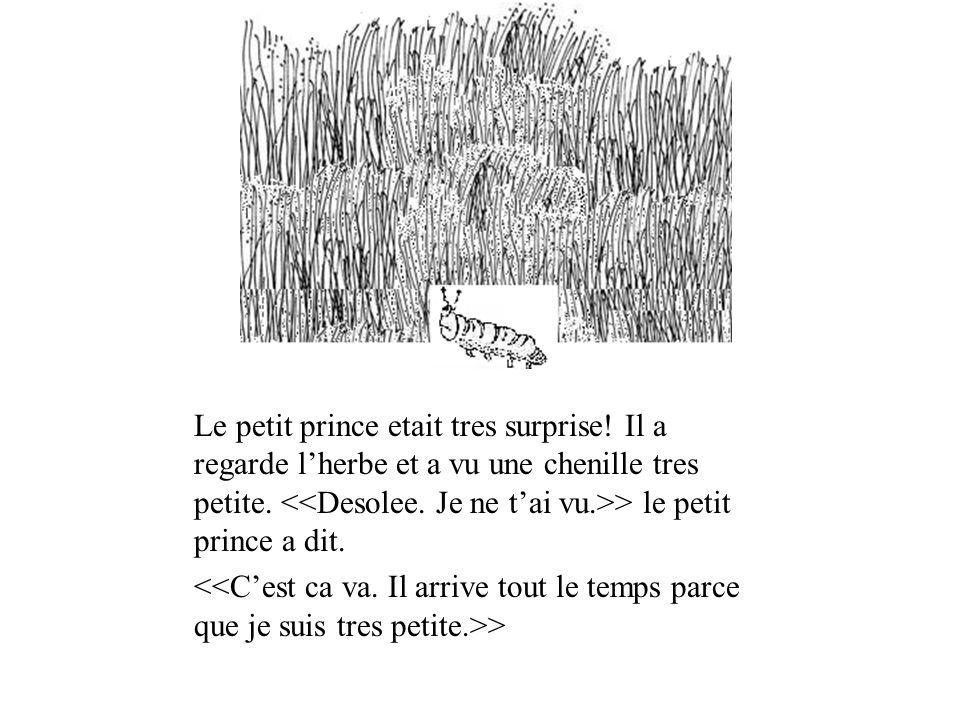 Le petit prince etait tres surprise! Il a regarde lherbe et a vu une chenille tres petite. > le petit prince a dit. >