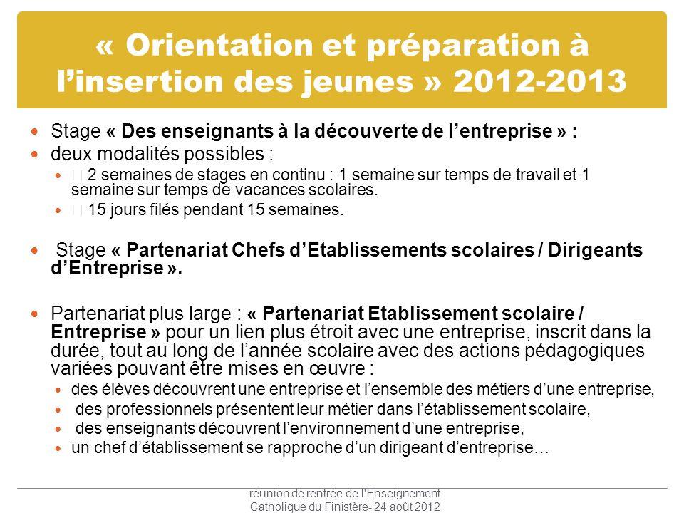 « Orientation et préparation à linsertion des jeunes » 2012-2013 Stage « Des enseignants à la découverte de lentreprise » : deux modalités possibles :