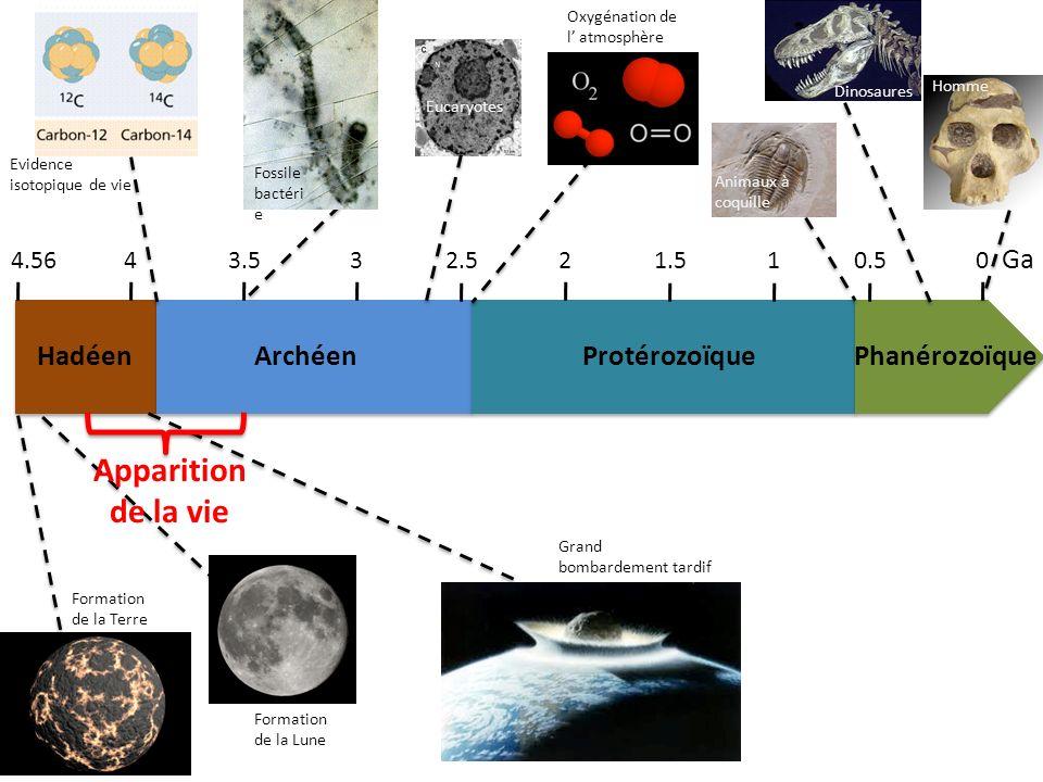 HadéenArchéenProtérozoïquePhanérozoïque 4.5643.532.521.510.50 Ga Formation de la Terre Formation de la Lune Grand bombardement tardif Evidence isotopi