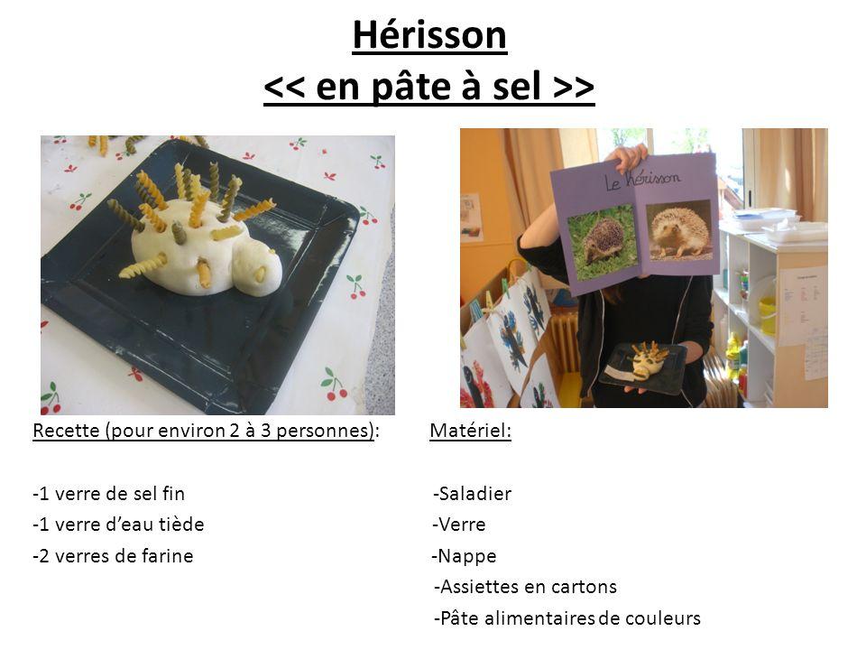 Hérisson > Recette (pour environ 2 à 3 personnes): Matériel: -1 verre de sel fin -Saladier -1 verre deau tiède -Verre -2 verres de farine -Nappe -Assi
