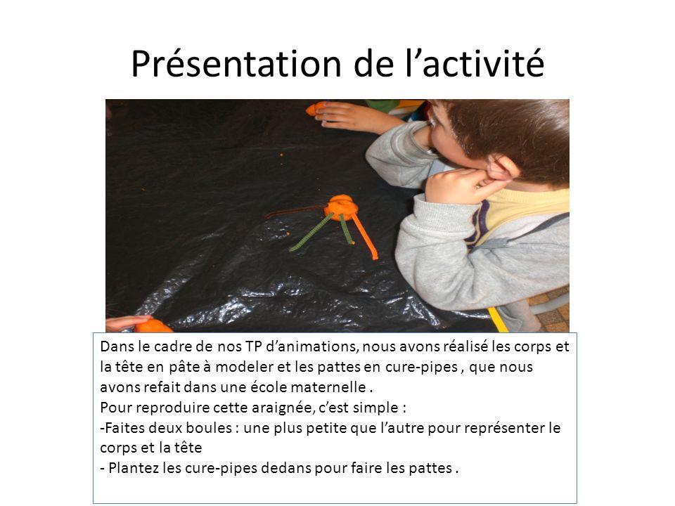 Le résultat de lactivité A la fin de lactivité ils ont du poser leurs araignées sur une toile réalisée au préalable par les élèves avec de la laine et une aiguille