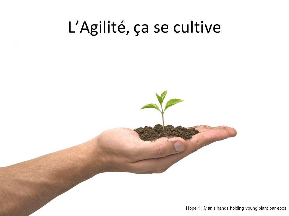 LAgilité, ça se cultive Hope 1 : Man s hands holding young plant par eocs