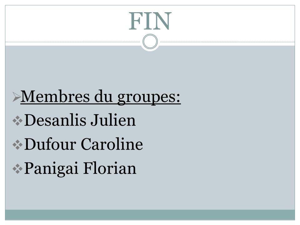 FIN Membres du groupes: Desanlis Julien Dufour Caroline Panigai Florian