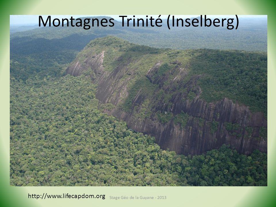 Stage Géo de la Guyane - 2013 http://www.lifecapdom.org Montagnes Trinité (Inselberg)