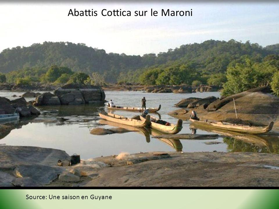 Abattis Cottica sur le Maroni Source: Une saison en Guyane