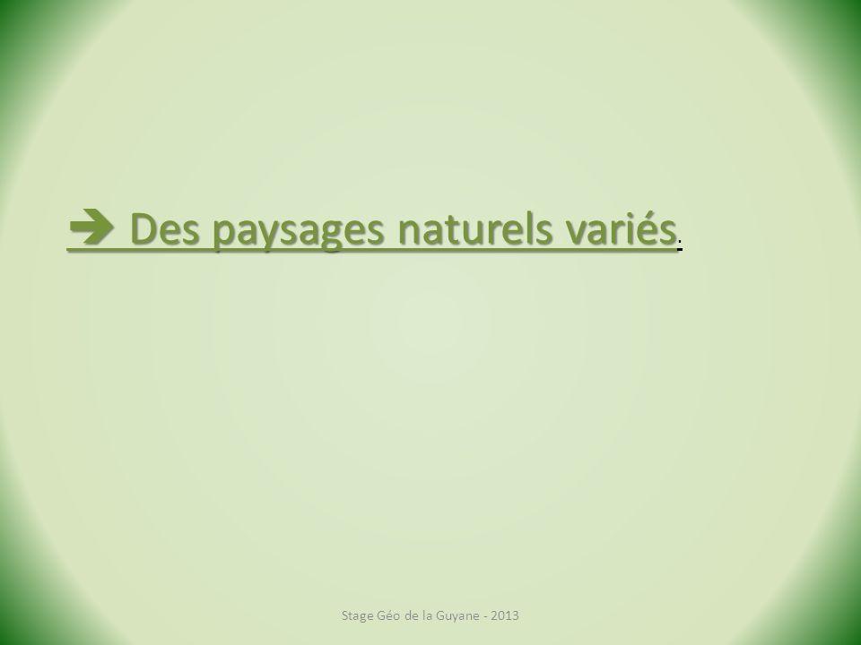 Stage Géo de la Guyane - 2013 Des paysages naturels variés Des paysages naturels variés.