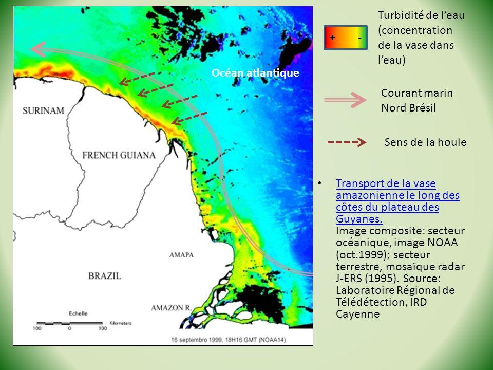 Transport de la vase amazonienne le long des côtes du plateau des Guyanes. Image composite: secteur océanique, image NOAA (oct.1999); secteur terrestr