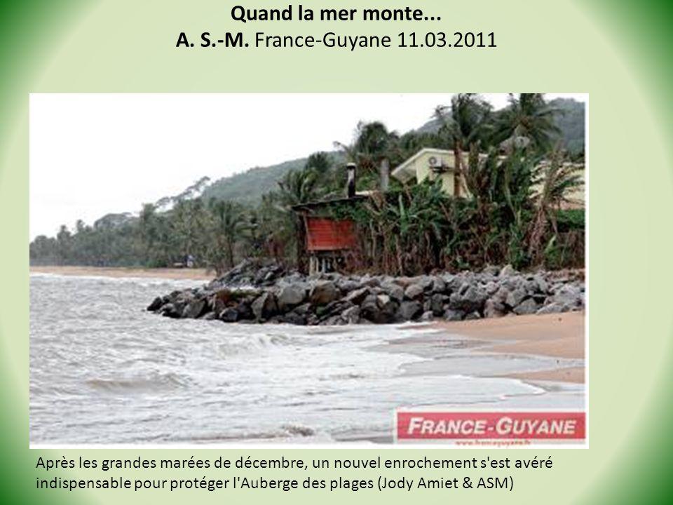 Quand la mer monte... A. S.-M. France-Guyane 11.03.2011 Après les grandes marées de décembre, un nouvel enrochement s'est avéré indispensable pour pro