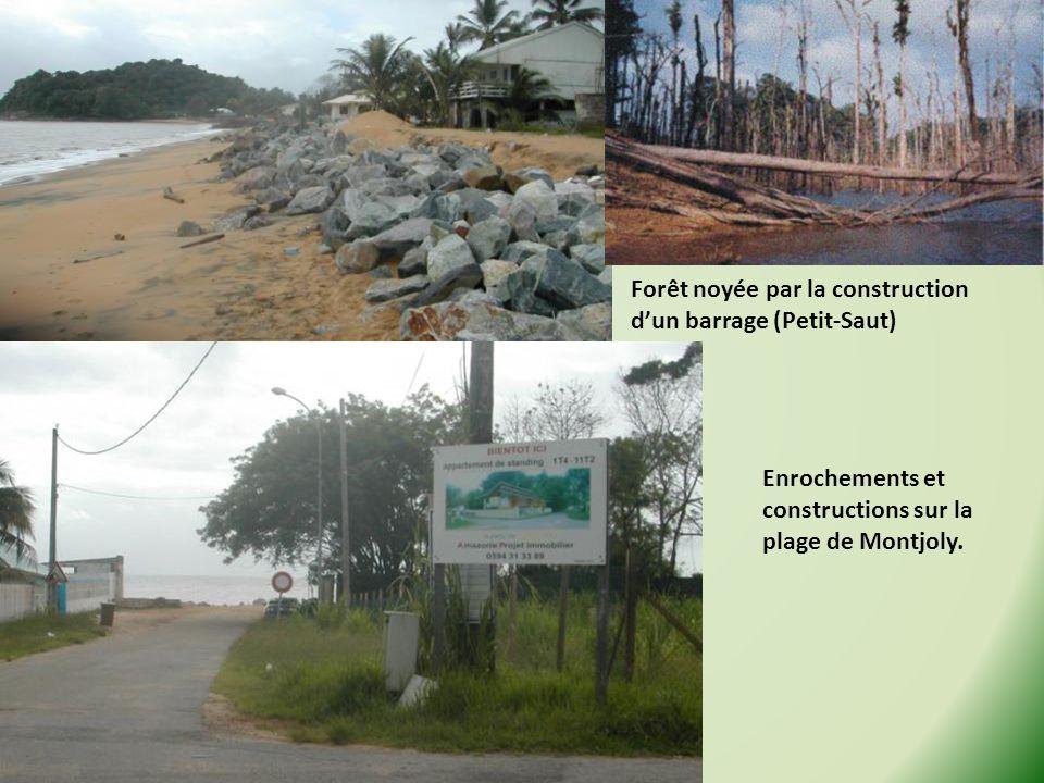 Forêt noyée par la construction dun barrage (Petit-Saut) Enrochements et constructions sur la plage de Montjoly.