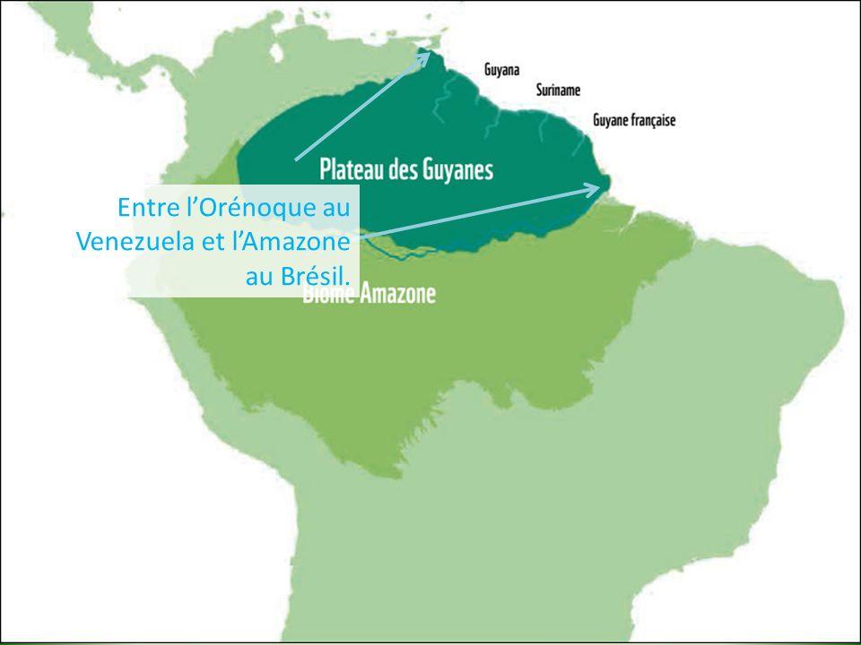Pourquoi pas de séismes .Guyane pas en frontière de plaque.
