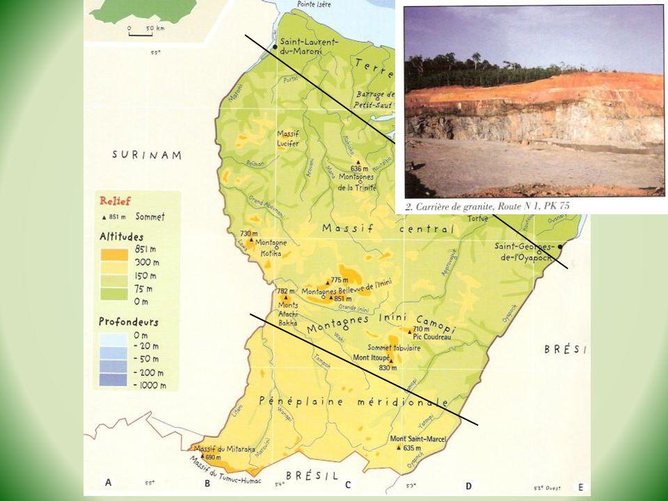 –Envasement : accumulation de bancs de sable due aux sédiments amenés par Amazone (cause turbidité).