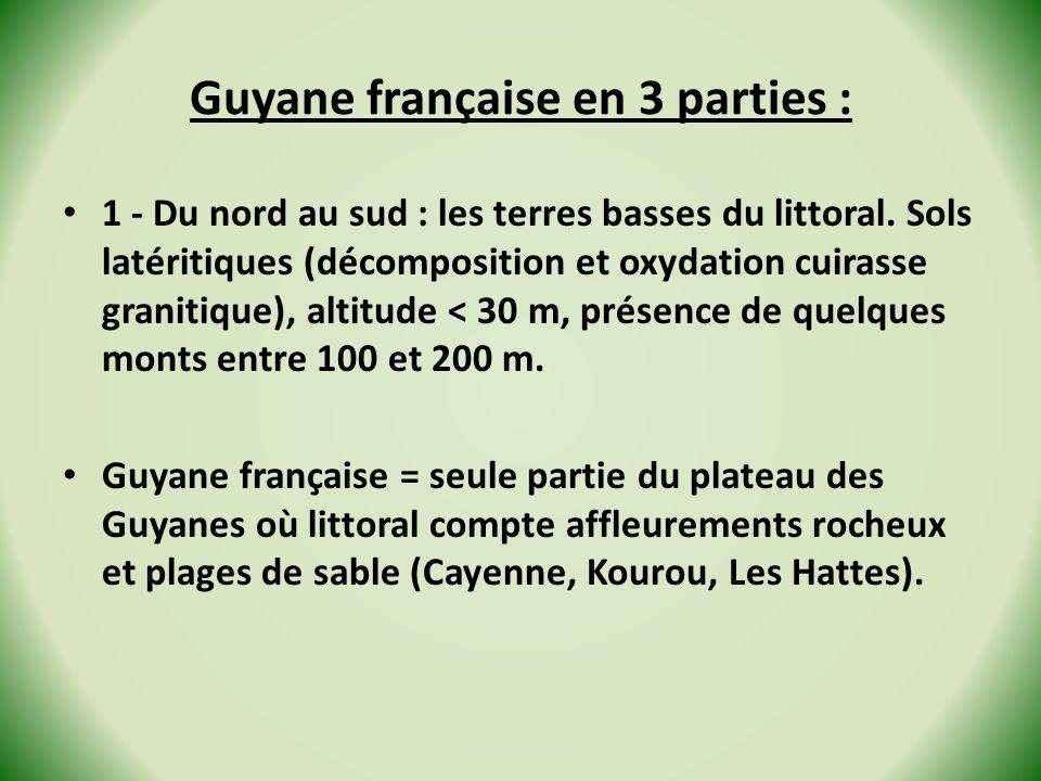 Guyane française en 3 parties : 1 - Du nord au sud : les terres basses du littoral. Sols latéritiques (décomposition et oxydation cuirasse granitique)