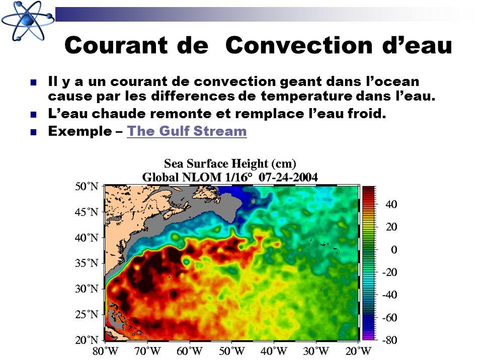 Courant de Convection deau Il y a un courant de convection geant dans locean cause par les differences de temperature dans leau. Leau chaude remonte e