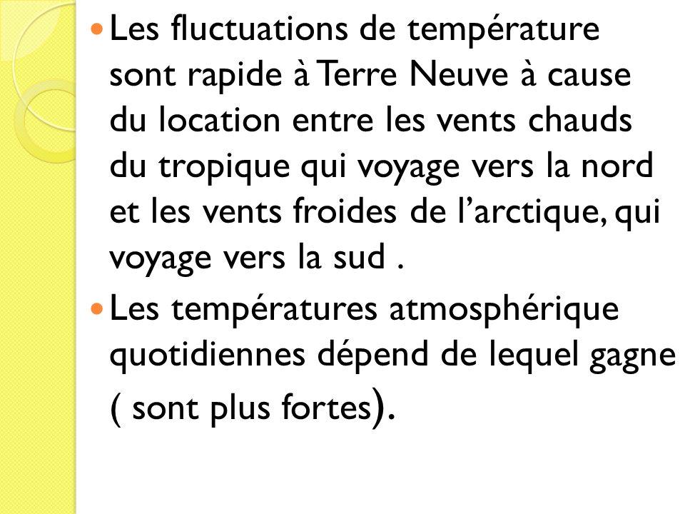 Les fluctuations de température sont rapide à Terre Neuve à cause du location entre les vents chauds du tropique qui voyage vers la nord et les vents