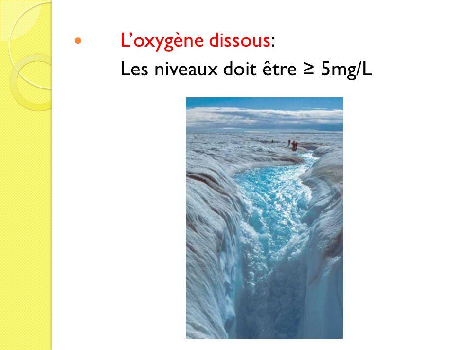 Loxygène dissous: Les niveaux doit être 5mg/L