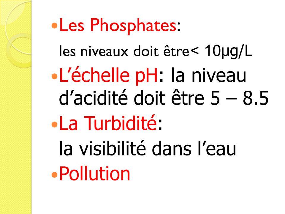 Les Phosphates: les niveaux doit être < 10µg/L Léchelle pH: la niveau dacidité doit être 5 – 8.5 La Turbidité: la visibilité dans leau Pollution