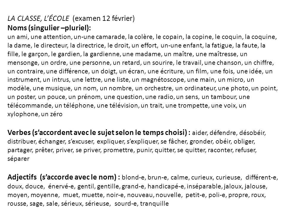 LA CLASSE, LÉCOLE (examen 12 février) Noms (singulier –pluriel): un ami, une attention, un-une camarade, la colère, le copain, la copine, le coquin, l