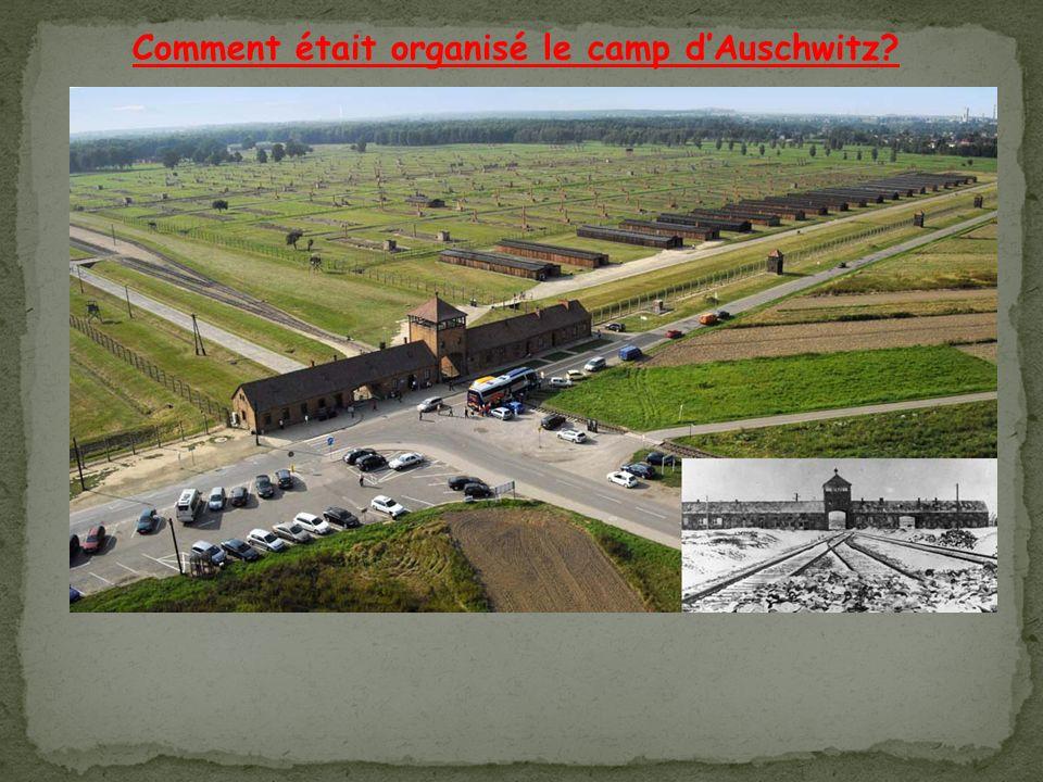 Comment était organisé le camp dAuschwitz?