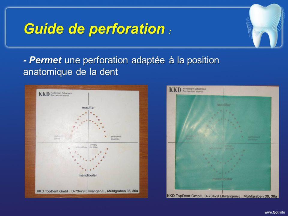 Guide de perforation : Permet une perforation adaptée à la position anatomique de la dent - Permet une perforation adaptée à la position anatomique de