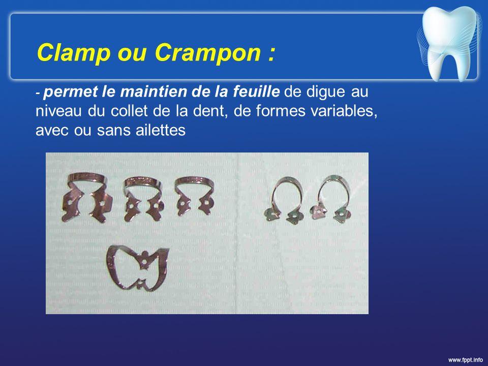 Clamp ou Crampon : - permet le maintien de la feuille de digue au niveau du collet de la dent, de formes variables, avec ou sans ailettes