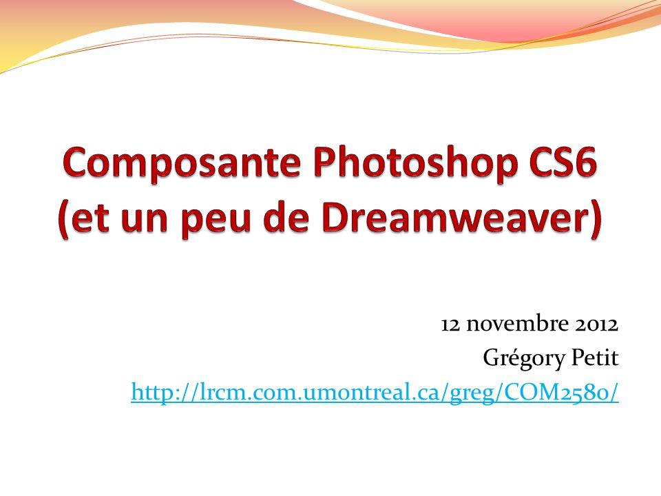 12 novembre 2012 Grégory Petit http://lrcm.com.umontreal.ca/greg/COM2580/